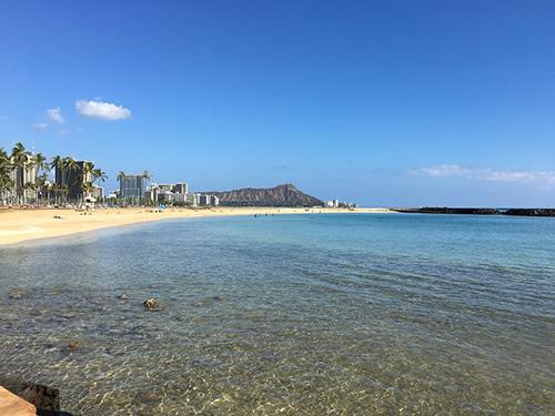 ハワイに合うタキシードを探す